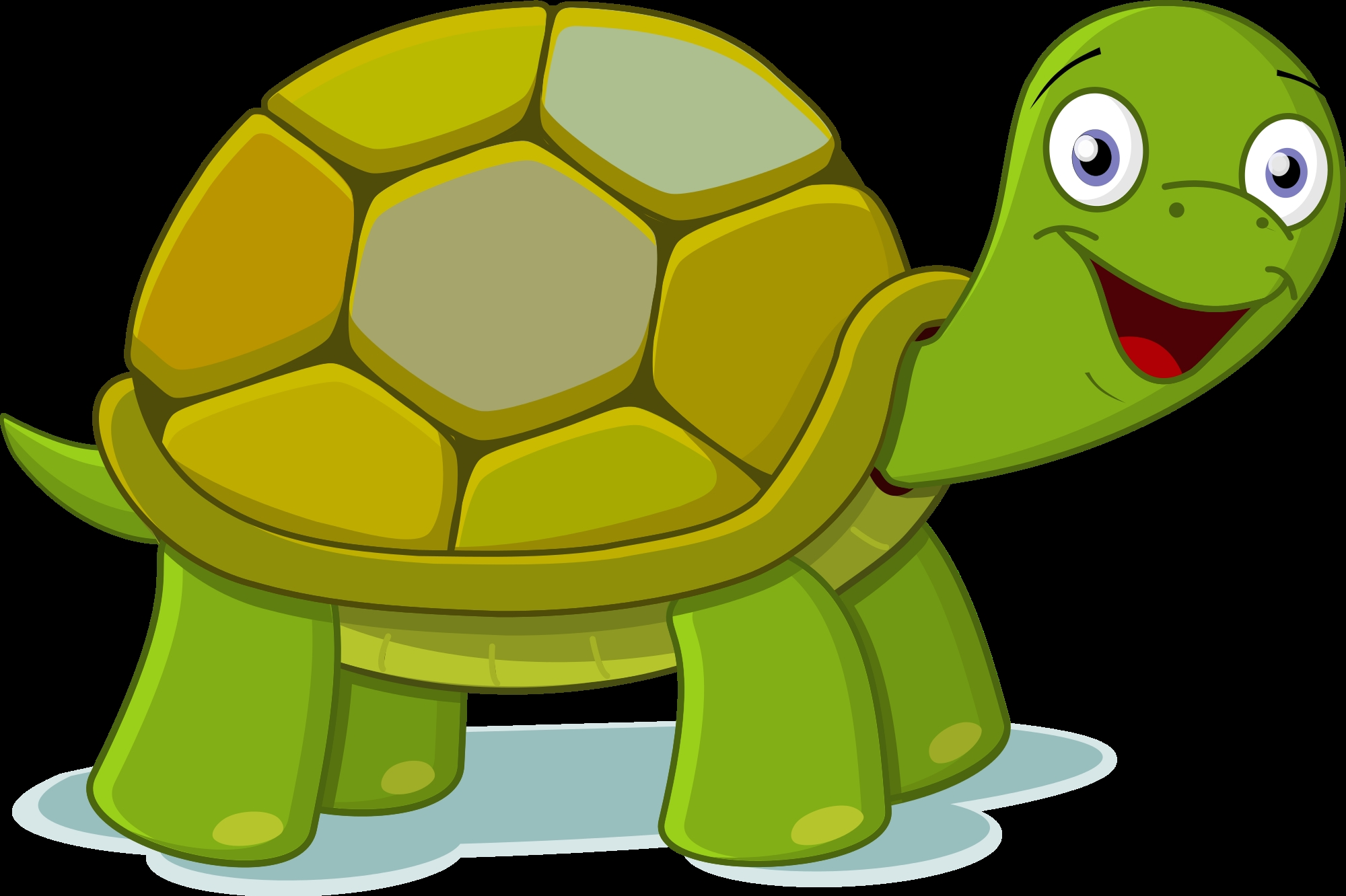 New design digital collection. 4 clipart turtle