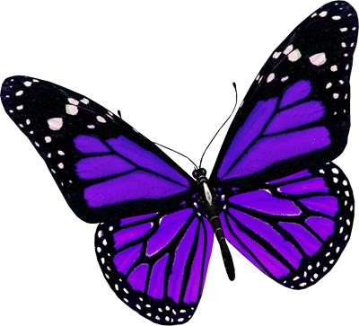 The top best blogs. 5 clipart butterfly