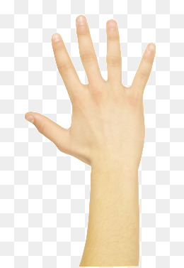 Five fingers png images. 5 clipart finger