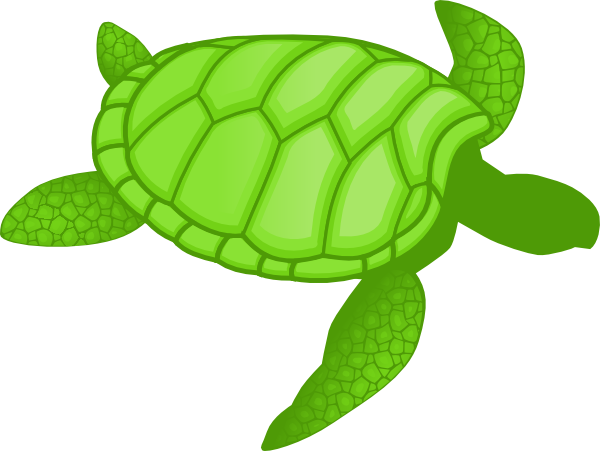 Clip art at clker. 5 clipart sea turtle