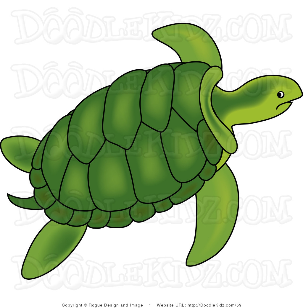 5 clipart sea turtle. Fresh gallery digital collection