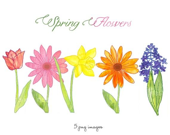 Free flowers best clip. 5 clipart spring