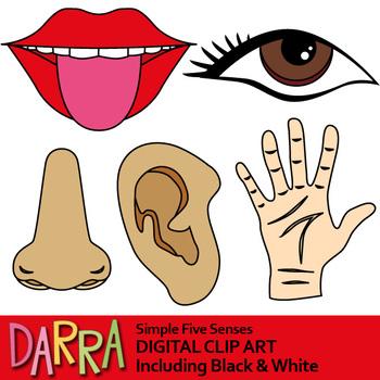 Five clip art . 5 senses clipart