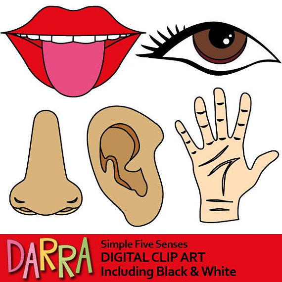 5 senses clipart. Five clip art commercial