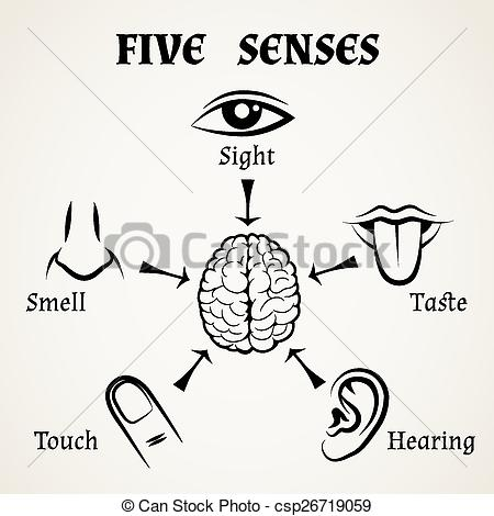 Sense organs station . 5 senses clipart black and white