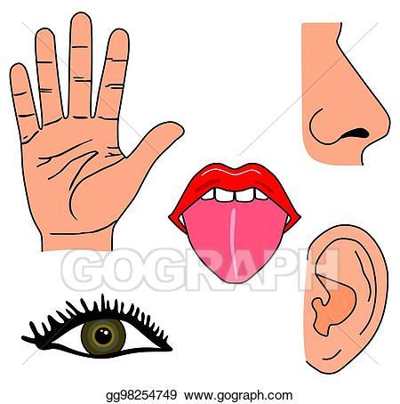 Stock illustration human five. 5 senses clipart cartoon