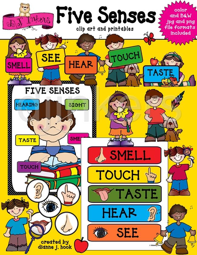 Free cliparts download clip. 5 senses clipart chart