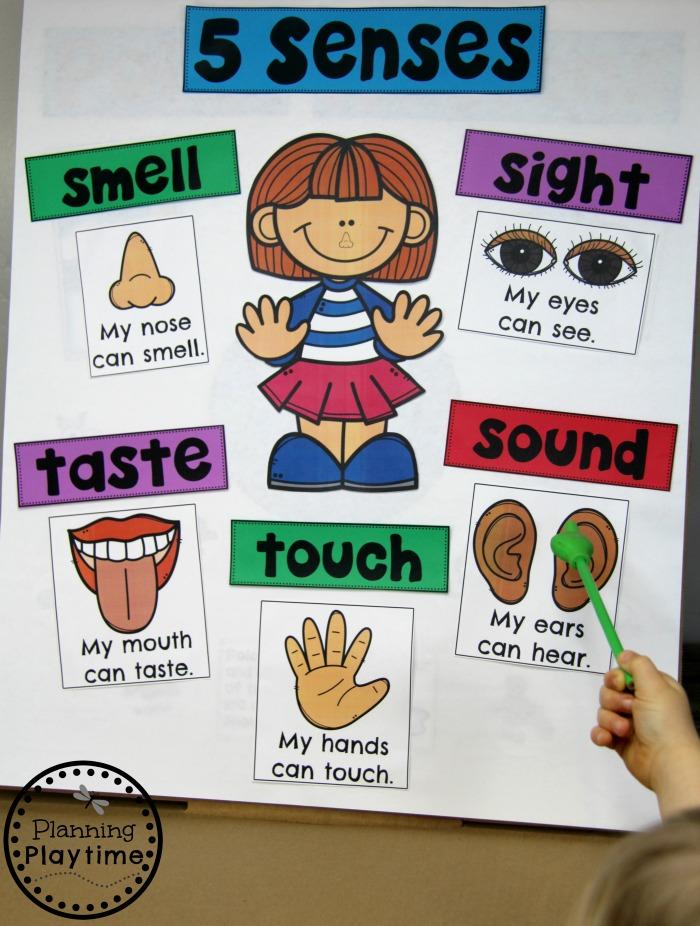 5 senses clipart chart.  planning playtime