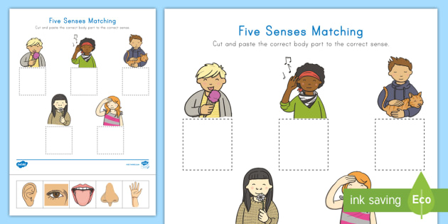 5 senses clipart communication disorder. Five matching worksheet activity