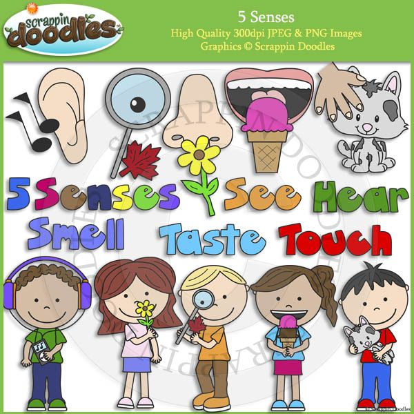 5 senses clipart cute #16660732