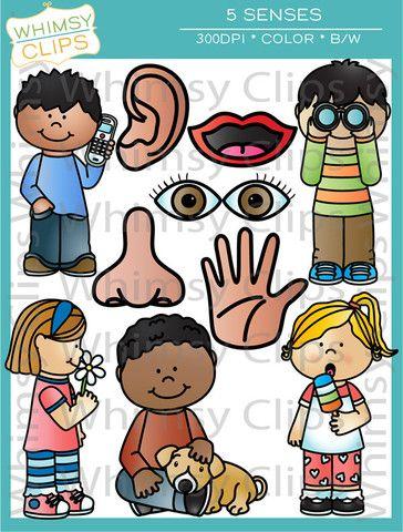 Five clip art school. 5 senses clipart cute