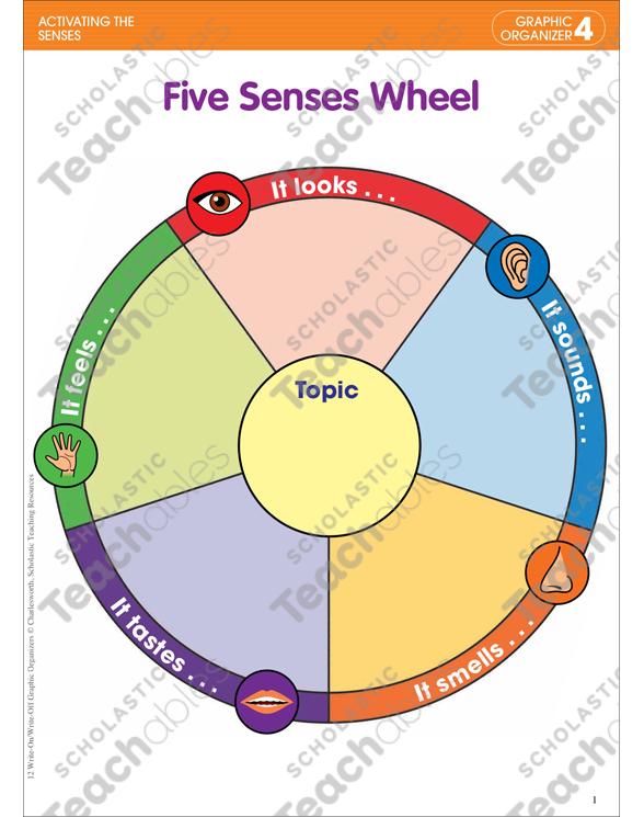5 senses clipart descriptive writing. Five wheel activating the