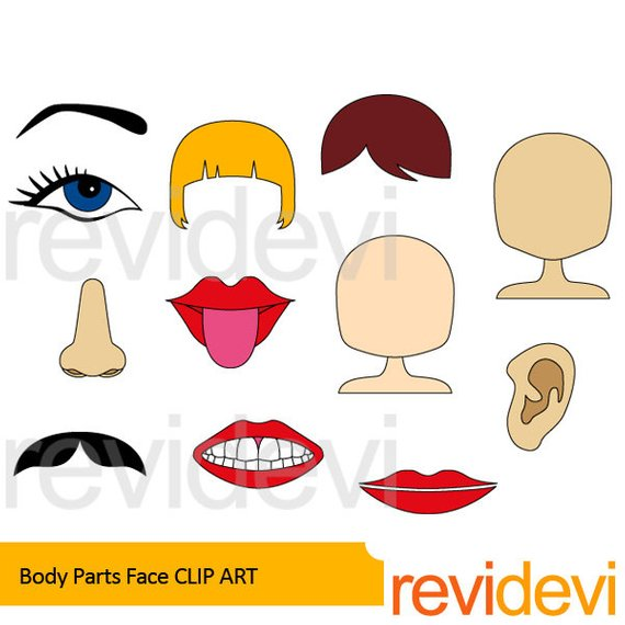 Body clipart face. Parts clip art the