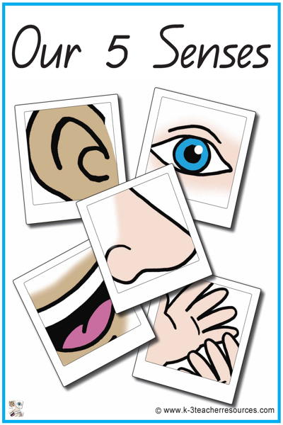 5 senses clipart face.  our vocabulary words