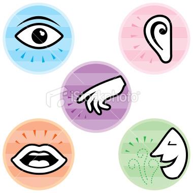 5 senses clipart face #16676930