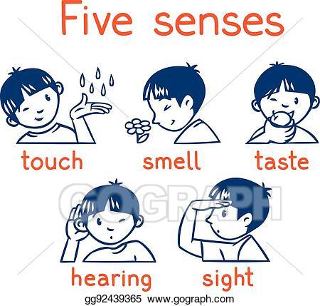 5 senses clipart face. Eps vector five monochrome