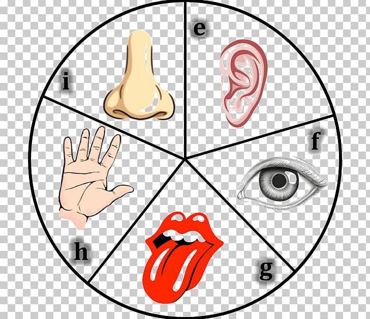 5 senses clipart face. The five organ sensory