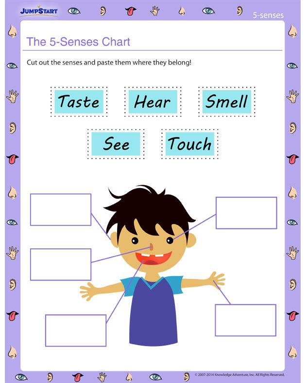 best images on. 5 senses clipart grade 1