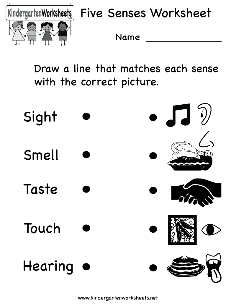 Kindergarten five worksheet printable. 5 senses clipart grade 1
