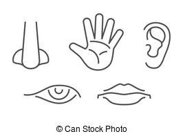 5 senses clipart hand.  clip art free