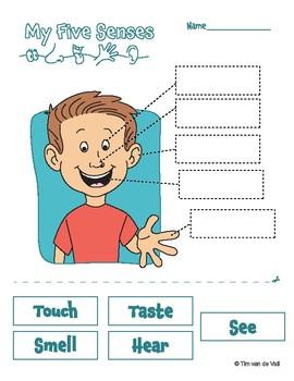 The five worksheets teachers. 5 senses clipart observation
