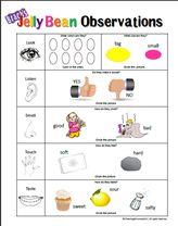 5 senses clipart observation.  best classroom all