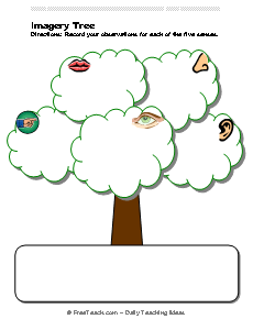 Imagery tree organizer freeology. 5 senses clipart observation