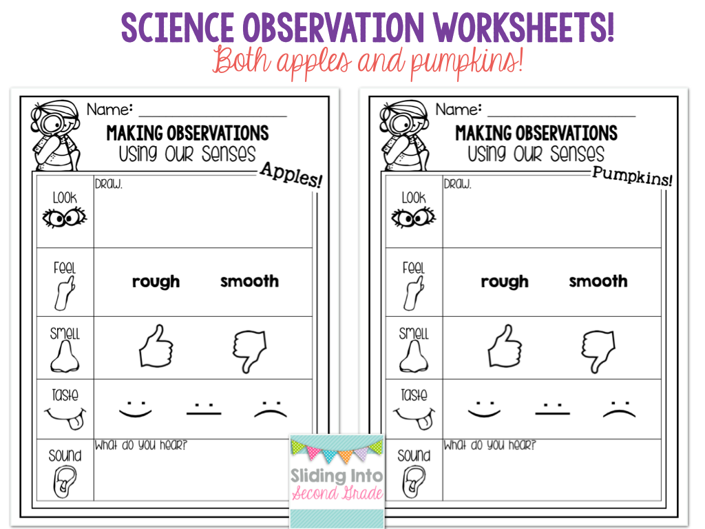 Sliding into second grade. 5 senses clipart observation