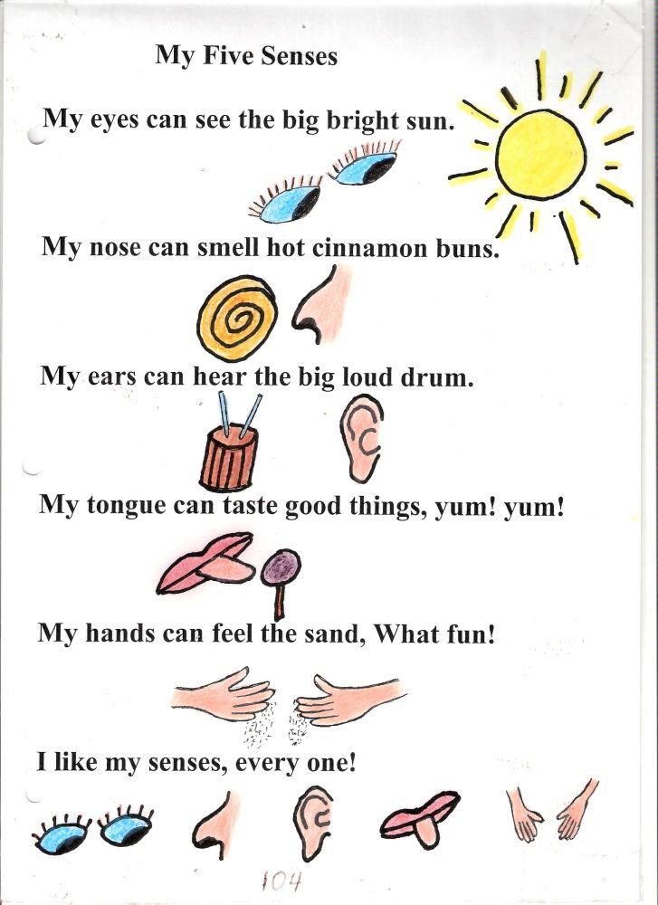 Poem no my five. 5 senses clipart observation