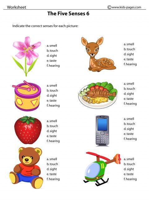 5 senses clipart pdf. Our five worksheets kids