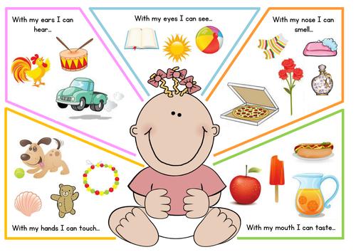 Five poster by toyahah. 5 senses clipart pdf