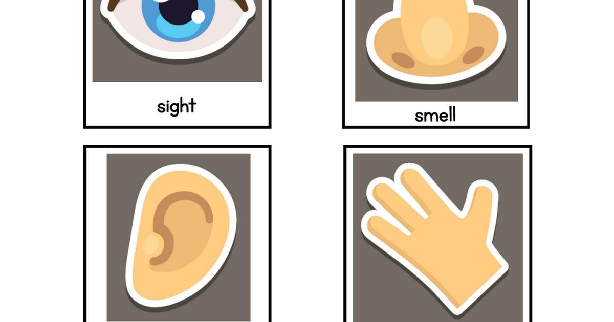 printable sense printables. 5 senses clipart pdf