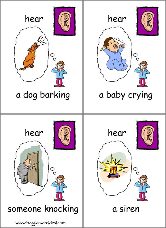 Five flashcards hear. 5 senses clipart pdf