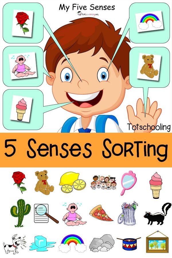 Five sorting printable free. 5 senses clipart preschool