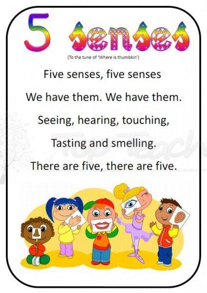 5 senses clipart preschool.  song top teacher