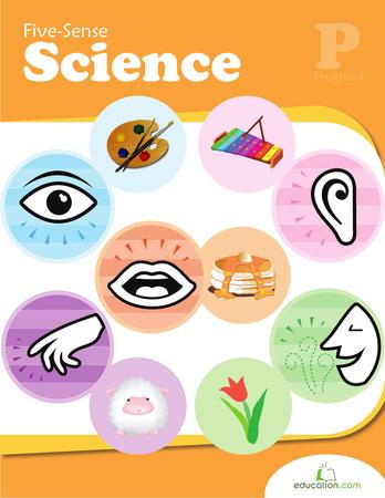5 senses clipart science #16681427