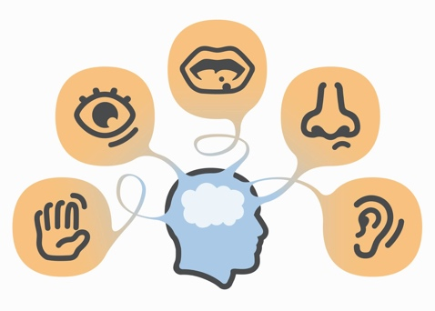 Engaging the Five Senses in Event Planning