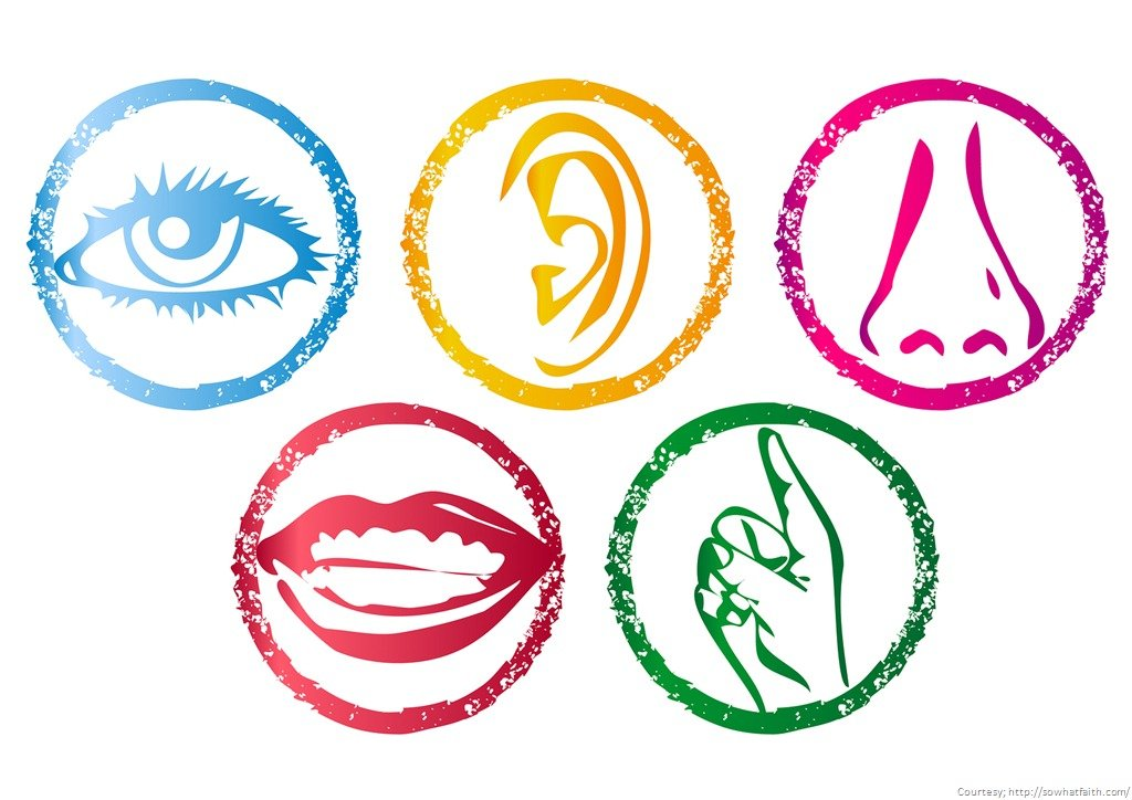 5 senses clipart sensory detail. How to write your