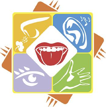 How marketers bond with. 5 senses clipart sensory marketing