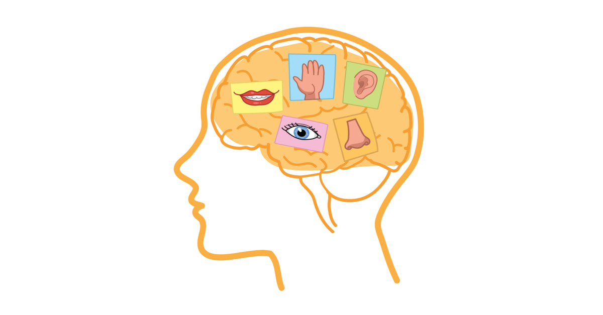 Are you using international. 5 senses clipart sensory marketing