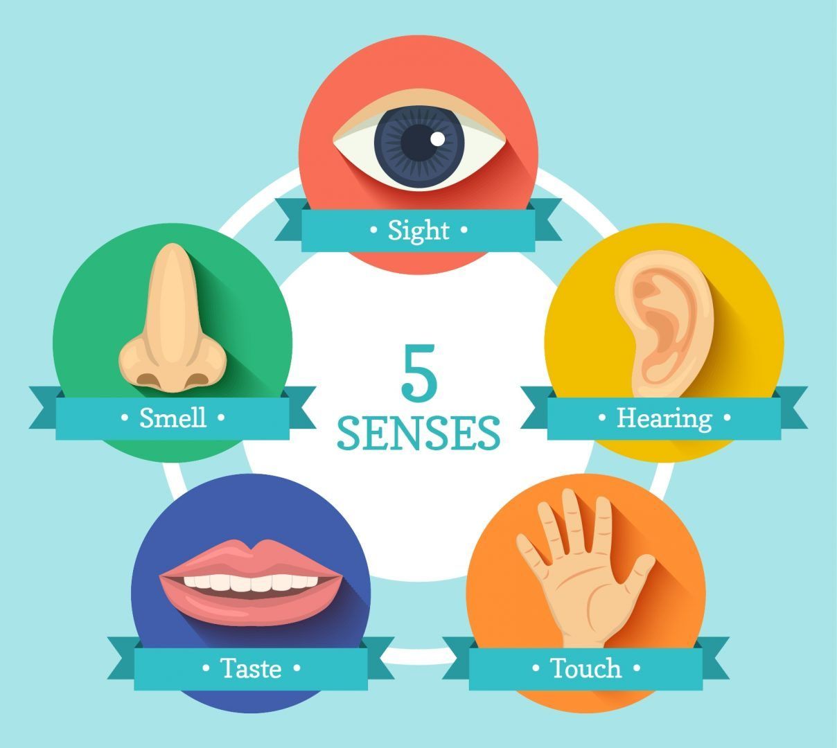 5 senses clipart sensory marketing. Engaging the five in