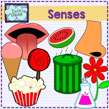 Five taste touch smell. 5 senses clipart sight