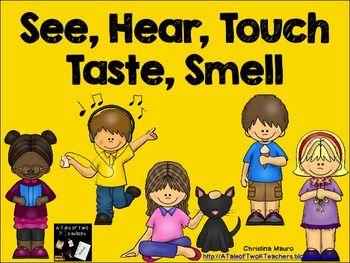 best images on. 5 senses clipart tactile learning