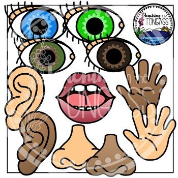 5 senses clipart teaching. Five