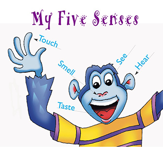 Teaching Children About The Five Senses