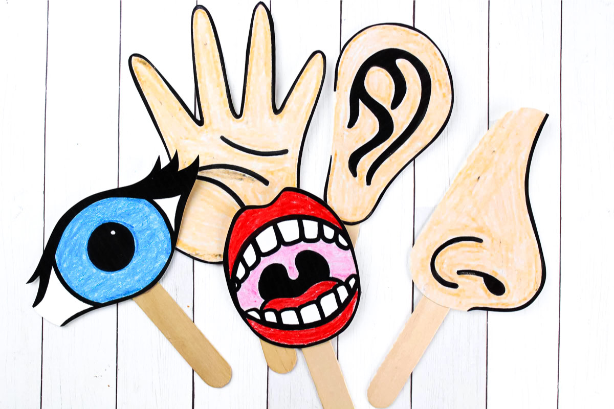 Download these free printable. 5 senses clipart teaching