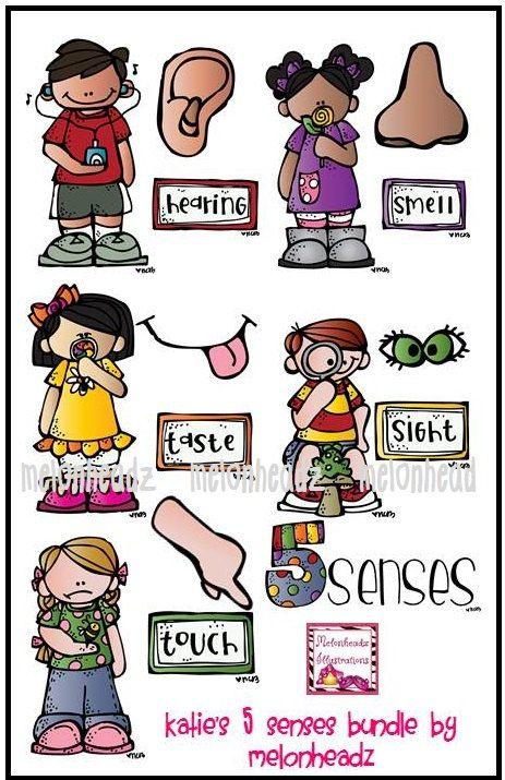 clip art combo. 5 senses clipart teaching