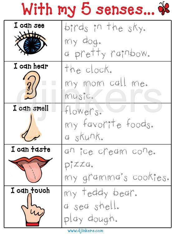 best the five. 5 senses clipart teaching