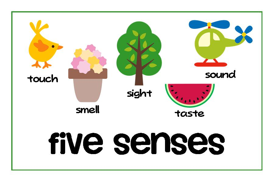 5 senses clipart toddler #16712271