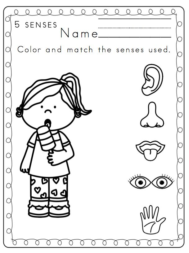 5 senses clipart toddler.  best the five